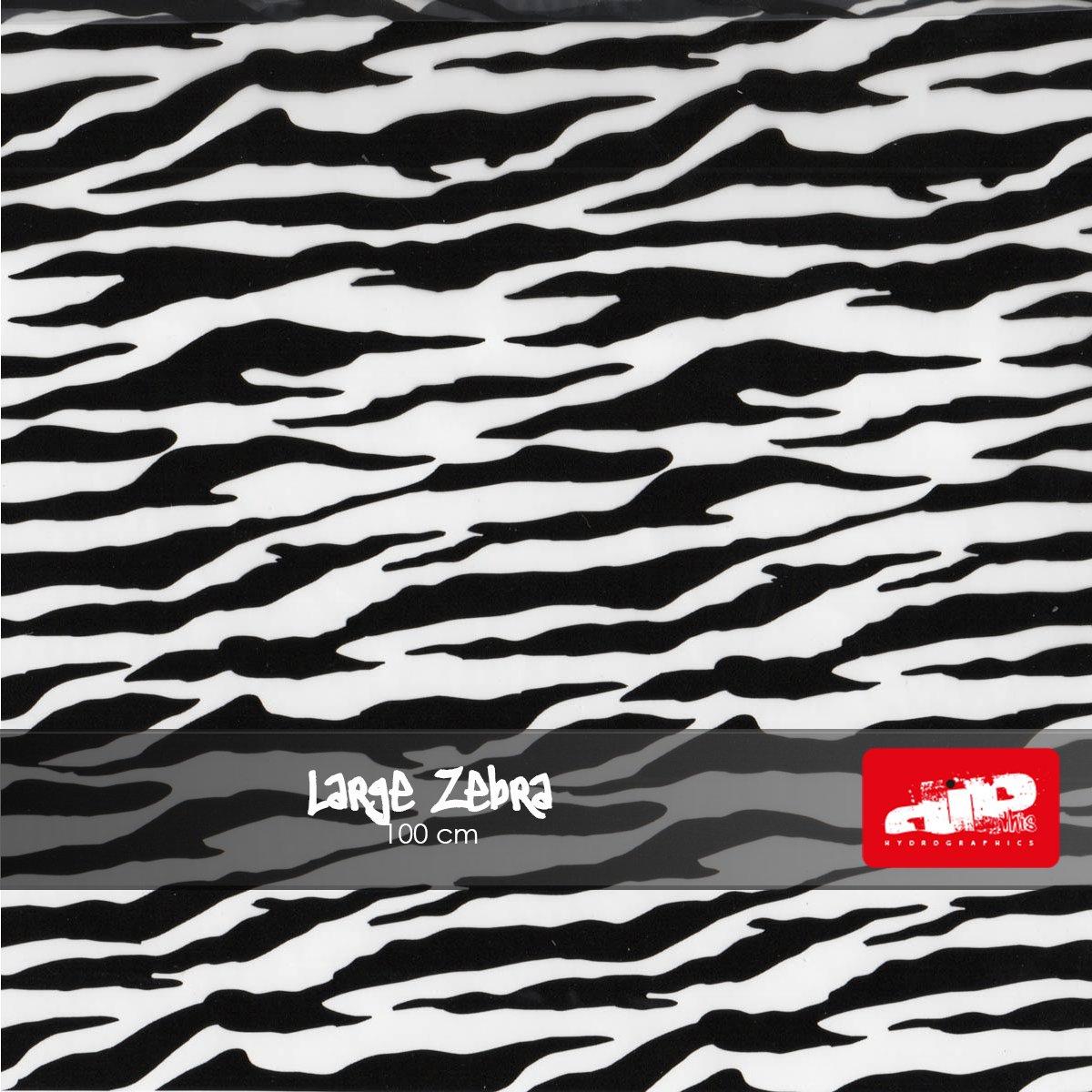 Large Zebra