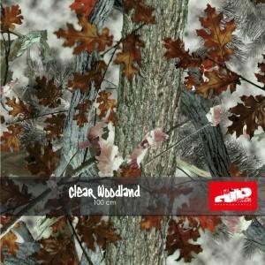clear woodland swatch