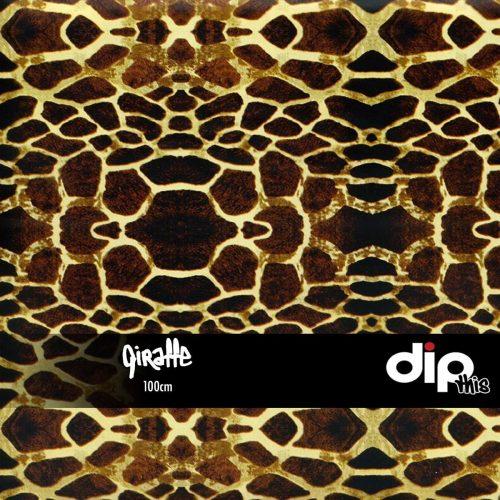 Giraffe Dip Kit