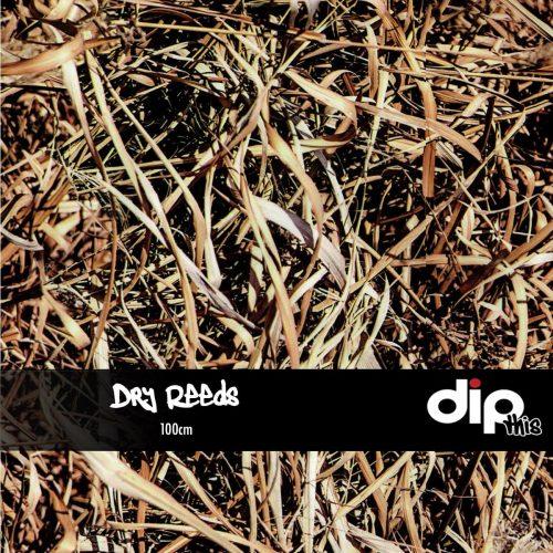 Dry Reeds Dip Kit